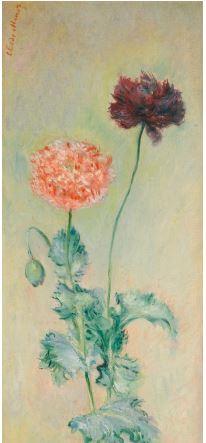 Pavots rouge et rose Claude Monet