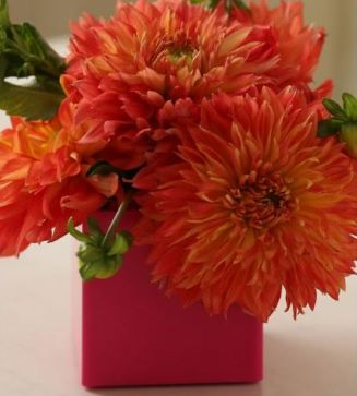 Bouquet de Dahlia Pinterest 3