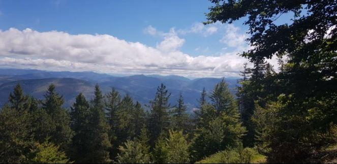 Mont Ventoux Randonnée 1